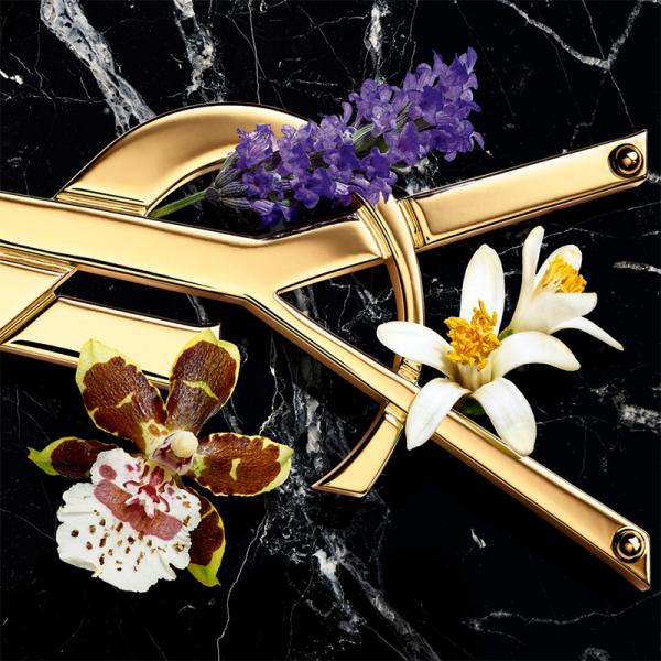 YSL Yves Saint Laurent Libre Intense Eau De Parfum 30ml
