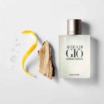 Giorgio Armani Acqua di Gio Pour Homme toaletna voda 50ml